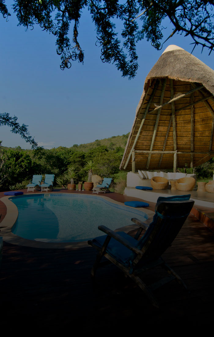 Ultimate-Bush-Lodge-Experience